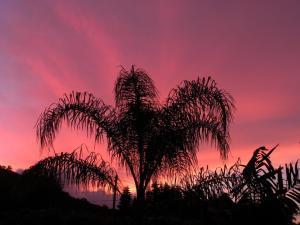 Molokai Sunrise Photo by Diane Pike